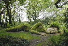 Visit Gardens in Cornwall. Explore some of the most beautiful gardens in Cornwall and discover rare trees, exotic plants and hidden gems. Lost Gardens Of Heligan, Image Nature, Art Nature, Nature Pics, Parcs, Natural Wonders, Mother Earth, Mother Nature, Botanical Gardens