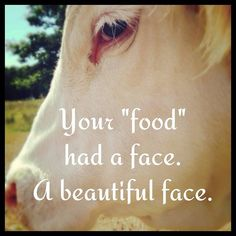 Meat: a nice word to describe dead animal FLESH. Compassion towards animals Vegan Facts, Vegan Memes, Vegan Quotes, Kriya Yoga, Reasons To Be Vegan, Animal Activist, Why Vegan, Stop Animal Cruelty, Vegan Animals