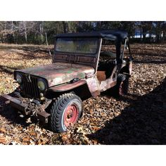 Willis jeep - This is the full windshield version my grandfather bought new in KY in 1949.  His was green.  We couldn't kill it as kids learning how to drive in it.