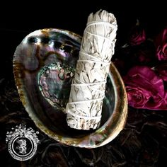 SACRED SMUDGE KIT - Blessed White Sage & Abalone Shell - Spiritual Cleansing & Protection