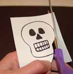 Skull for the q-tip skeleton