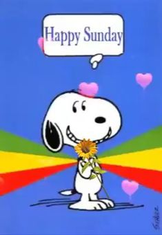 Happy Sunday Pictures, Good Morning Monday Images, Happy Monday Images, Good Morning Snoopy, Cute Good Morning Quotes, Happy Sunday Quotes, Cute Good Night, Good Morning Wishes, Snoopy Song