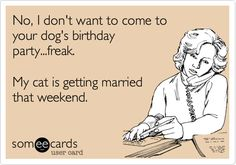 No, I don't want to come to your dog's birthday party...freak. My cat is getting married that weekend.   Confession Ecard   someecards.com