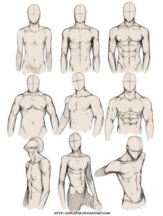teacupballerina:  gazmonster:  whisker:  youngartist-city:  Different Male Bodies.  wow ironically i was talking about this today or something? yesterday i think. maybe.  One day one day I will be able draw males  ghdhfhf all the ones on the left are my favorites