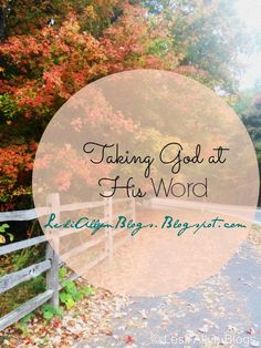 #NEWPOST Lesli Allyn Blogs: Taking God at His Word #pleaseshare #devotional #Blogger #proverbs30verse5 #proverbs #advice