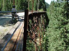 Bike Hiawatha rail trail...we've biked it and it is amazing!