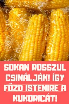 Hungarian Recipes, Lime, Vegetables, Food, Kitchen, Amigurumi, Kitchens, Cuisine, Meal
