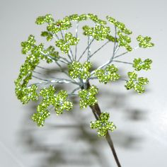 Modeled after Queen Anne's Lace but shaped a little more like domes ...