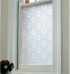 Window privacy without curtains!