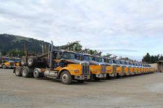 Ireland (8) (RyanP77) Tags: ireland trucking myrtle point oregon logger logging log truck kenworth t800 whitlog whit kw timber trucks fleet