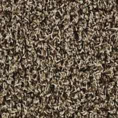 1000 Images About Carpet On Pinterest Shaw
