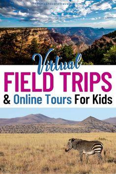 Virtual Museum Tours, Virtual Tour, Ireland Vacation, Ireland Travel, Travel With Kids, Family Travel, Virtual Field Trips, Virtual Travel, Culture Travel