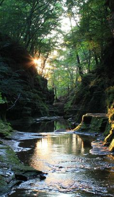Pewit's Nest: Wisconsin's secret swimming hole that's surrounded by waterfalls