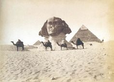 Sphinx and Pyramids - Maxime du Camp, 1850