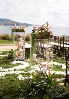 Lucite risers at the back of the aisle will have grape wood branches inside with scattered blooms and succulents.  Around the base, fun arrangements of folded green ti leaves, greenery, flowers and succulents will be tucked around with pillar candles in vases coming up out of the middle.  #wedding