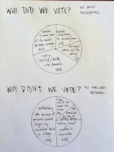 Why you did/did not vote