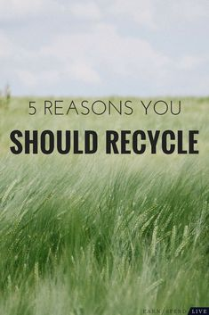 5 Reasons Why Everyone Should Recycle Be conscious about where your waste is going and, hopefully, opt for the recycle bin next time you're looking for a place to chunk your trash. Hobbies For Adults, Hobbies For Women, Gifts For Girls, Gifts For Mom, Hobby Bird, Hobby Town, Cheap Hobbies, Christmas Gifts For Friends, Presents For Her