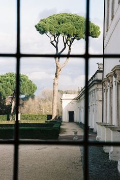 ZsaZsa Bellagio – Like No Other: House Beautiful. and Neutral Life Is Beautiful, Beautiful Homes, Beautiful Places, Outdoor Gardens, Indoor Outdoor, Voyage Rome, Birds In The Sky, Through The Window, Garden Inspiration
