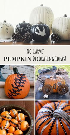 'No Carve' Pumpkin Decorating Ideas & Tutorials! • Check out these ideas & projects for no carve pumpkin decorating.