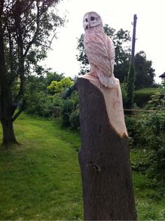 Twitter / Treesculpting: Chainsaw carved Owl in Ash ...