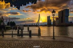 🌞 Rotterdam Architecture, My Town, Holland, Dutch, New York Skyline, Places To Go, Sunset, City, Pictures