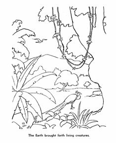 the 6th day of creation bible coloring pagescreation - Creation Coloring Pages