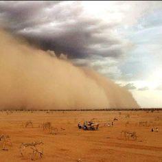 """Sahara     vientos del SAHARA entraron en españa desde hace dos dias ....TENEMOS TEMPERATURAS  DE 42/43  Y 44 GRADSO    BUENOS DIAS """"!!!!!"""