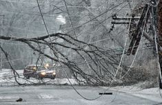 Tips On How to Survive a Blizzard or Winter Storm With No Power  http://www.survivorninja.com/how-to-survive-a-blizzard-or-winter-storm-with-no-power/