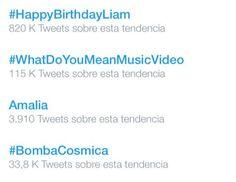  #HappyBirthdayLiam comenzo a ser TT en Twitter, a solo horas de su cumpleaños :)