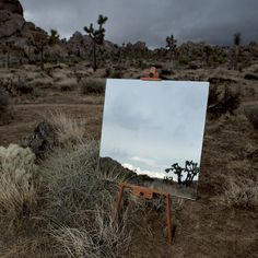 The Edge Effect by Daniel Kukla   A R T N A U