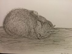 Nr 13* 19-3-16 8th Of March, Drawings, Day, Sketches, Draw, Drawing, Pictures, Paintings, Illustrations