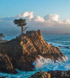 Lone cypress after the storm (Pebble Beach, Monterey, California) Ron Lowe Monterey California, California Coast, California Travel, Carmel California, Monterey County, Travel Oklahoma, Marina California, Pebble Beach California, Monterey Cypress