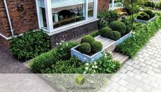 Garden Design Layout - New ideas