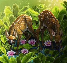 Two twin fawns feeding among the water lilies - by Alida Loubser (Artwork medium: Digital painting in Adobe Photoshop, Wacom Intuos tablet) Wacom Intuos, Water Lilies, Adobe Photoshop, Twin, Lily, Photo And Video, Digital, Medium, Artwork