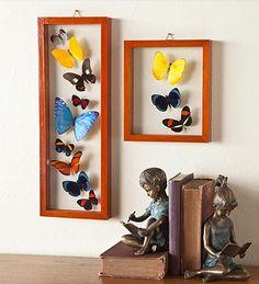 diy butterfly shadowbox inspiration