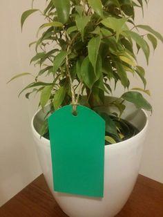 TARJETA STANDARD REDONDA Papel lustre verde. #papel #reciclaje #paperlove #manualidades #arte #artesania #tarjetas #mensaje #tarjetaderegalo #diseño #verde #green #ficus #minificus #navidad #navidad2015