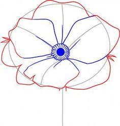 how to draw poppy Wie zeichnet man Mohn Flower Drawing Tutorials, Watercolour Tutorials, Pretty Drawings, Art Drawings, Flower Drawings, Drawing Flowers, Plant Drawing, Painting & Drawing, Poppy Drawing