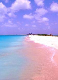 Barbuda, pink sand beach