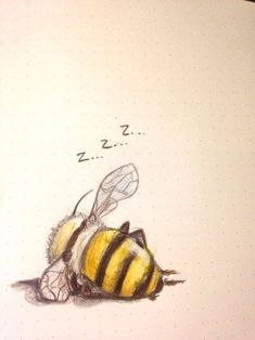 "schinkennudeln: ""Also my last drawing . schinkennudeln: ""Also my last drawing of 2016 was a bee taking a nap "" Vintage Bee, Bee Art, Art Et Illustration, Bumble Bee Illustration, Animal Illustrations, Designs To Draw, Drawing Designs, Cute Drawings, Drawings Of Animals"