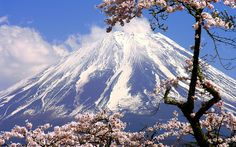 Japan Mountains Mount Fuji Cherry Blossoms Flowers Spring