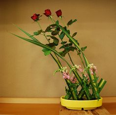 From Ikebana Lessons | Flickr: partage de photos!