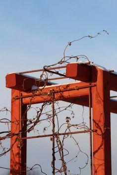Snygg lösning på armeringsmatta i portal av trä.