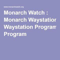 Monarch Watch : Monarch Waystation Program