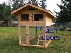 Matt, the girls like this Chicken Coop Plan
