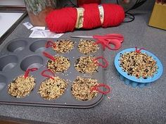 Bird Seed Cakes . I really like this idea. It uses 3 cups of bird seed and 1 oz. of powdered gelatin (with 1 cup boiling water). Very easy to do with the kids too. You could do this as a winter or a spring project. Less messy than using peanut butter.