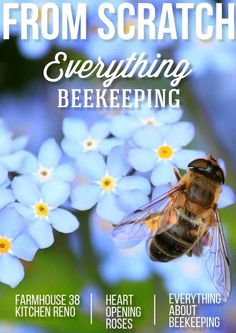 From Scratch Magazine June/July 2015  The best resource for the modern homesteader. This issue: Bees! Everything you needed to know about beekeeping.
