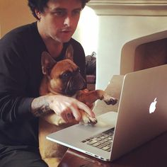 Adrienne Armstrong, Billie Joe Armstrong, Great Bands, Cool Bands, Green Day Billie Joe, Figure Photo, Paramore, Funny Cute, French Bulldog