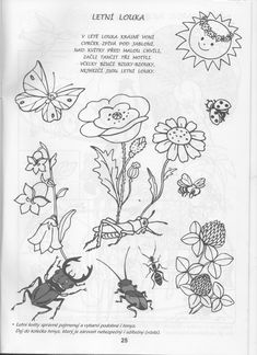 Flower Activities For Kids, Ps, Worksheets, Education, Flowers, Blog, Blogging, Literacy Centers, Onderwijs