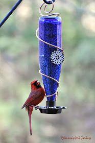 Rebecca's Bird Gardens: wine bottle bird feeder