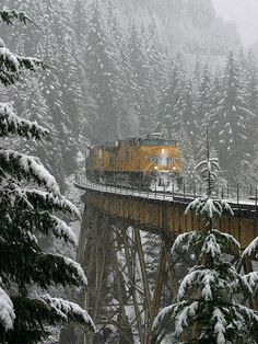 Train                                                                                                                                                                                 More